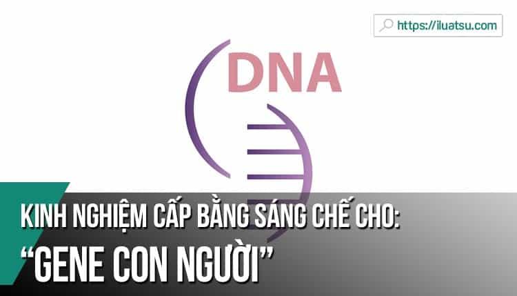Cấp bằng sáng chế cho gene con người – kinh nghiệm từ một số quốc gia
