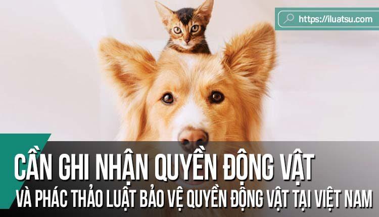 Sự cần thiết ghi nhận quyền động vật và phác thảo luật bảo vệ quyền động vật tại Việt Nam