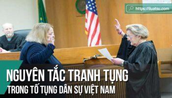 Nguyên tắc tranh tụng trong Tố tụng dân sự Việt Nam
