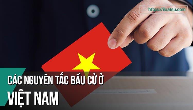 Các nguyên tắc bầu cử ở Việt Nam hiện nay