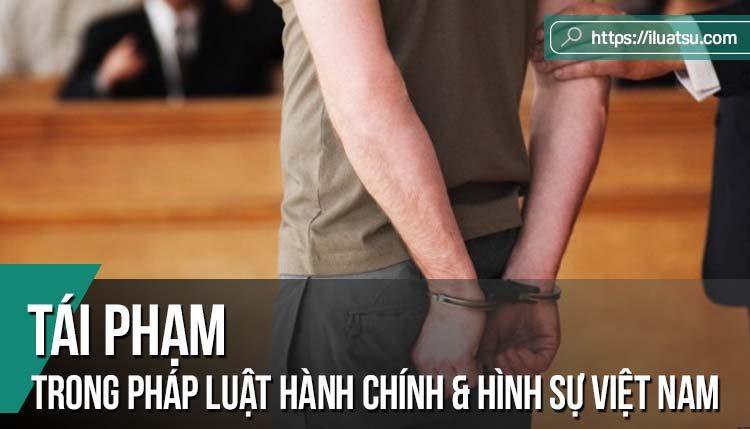 Tái phạm hành chính trong pháp luật hành chính và hình sự Việt Nam