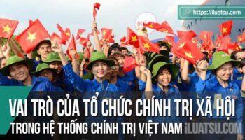 Vị trí, vai trò của các tổ chức chính trị - xã hội trong hệ thống chính trị Việt Nam