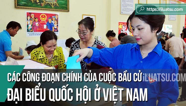 Các công đoạn chính của Cuộc bầu cử Đại biểu Quốc hội ở Việt Nam