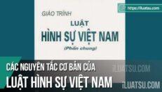 Các nguyên tắc cơ bản của Luật Hình sự Việt Nam